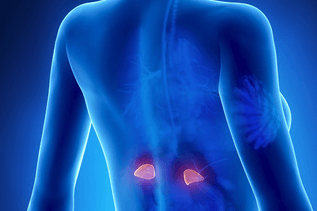 what causes adrenal fatigue