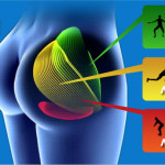 Workout Shortcut For Strong & Shapely Glutes