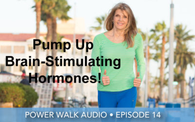Episode 14 | 40-Minute Power Walking Audio